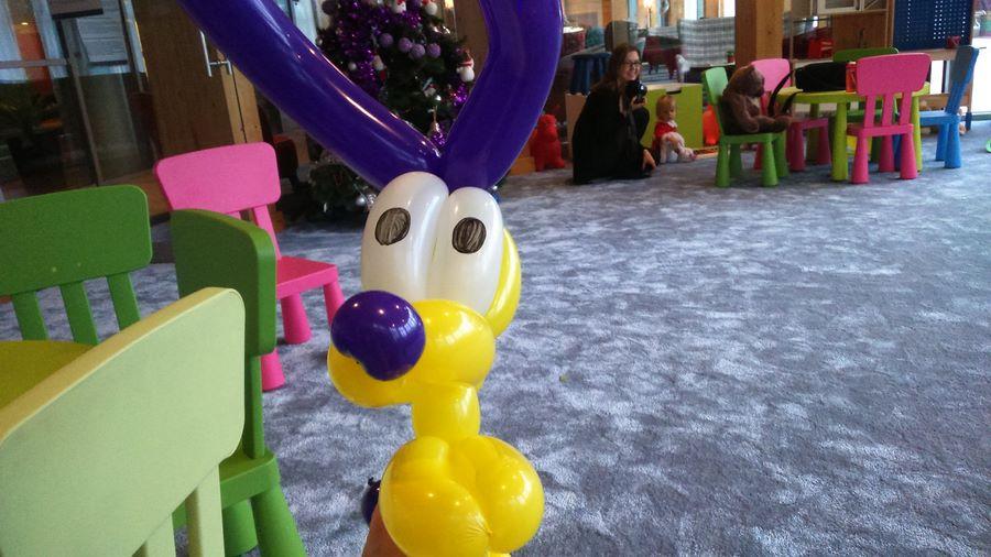 piesek z balonów - animacje w hotelu