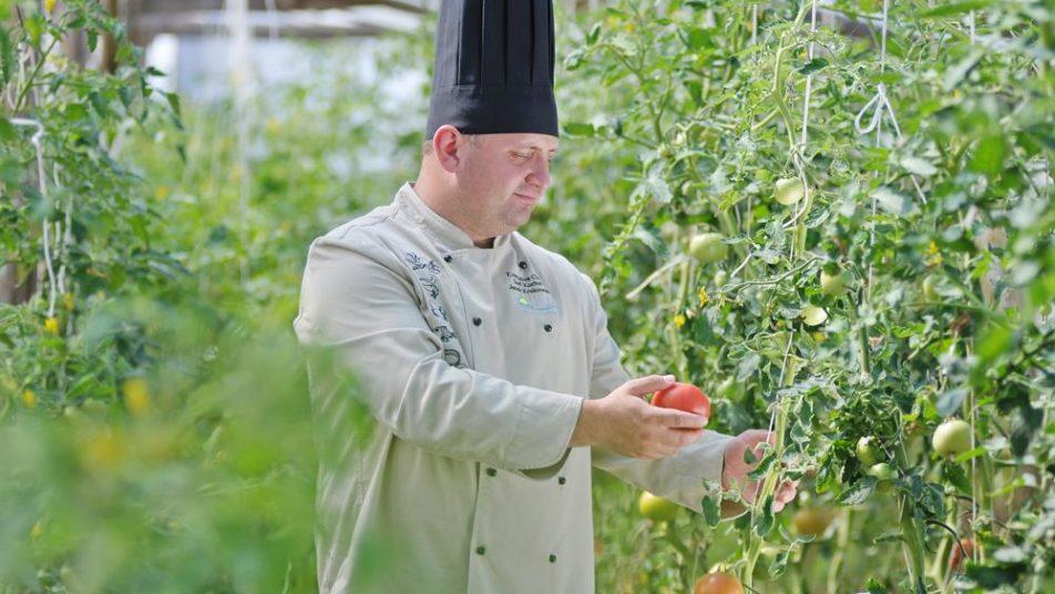 Najlepsze warzywa do hotelowej restauracji