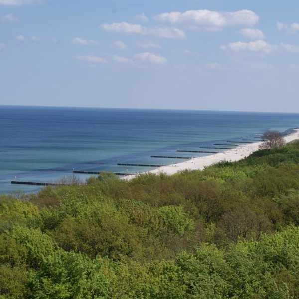 widok horyzontu morza